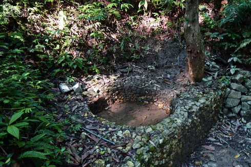 tran hung dao forest – birthplace of vietnam people's army hinh 2