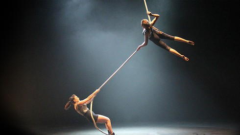 australia's leading circus troupe to perform at hue festival 2020 hinh 0