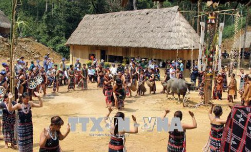 co tu ritual pays gratitude to forest hinh 0