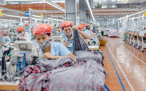 rules of origin trip up garment and textile opportunities from evfta hinh 0