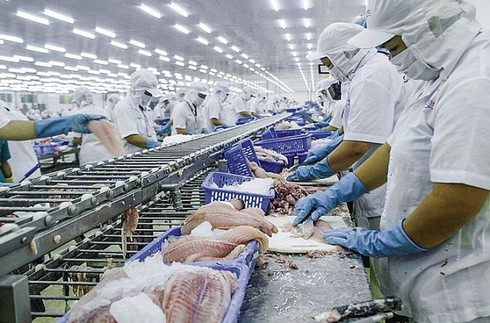 new-generation ftas to provide fresh impetus for industries amid covid-19 hinh 0