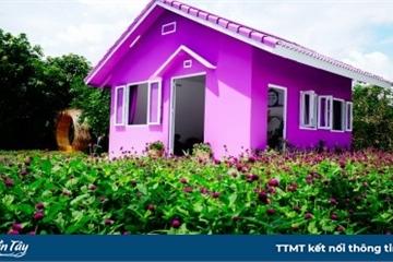 """Căn nhà màu tím ở Cần Thơ """"đốn tim"""" du khách"""