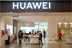 Doanh số smartphone tại TQ giảm hơn 20% trong năm 2020