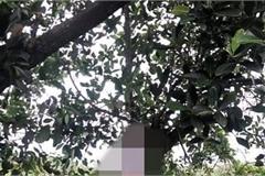 Phát hiện thi thể nghi người cha sát hại 2 con ở Vũng Tàu