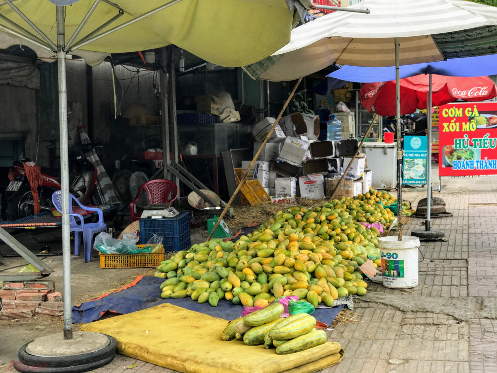 Tại một điểm khác trên đường Phạm Văn Đồng, người bán cho hay dù giá xoài đang rất rẻ tuy nhiên vẫn khá ít người đến mua vì đang cách ly toàn xã hội, người này cho hay mỗi ngày chỉ bán khoảng vài chục ký.