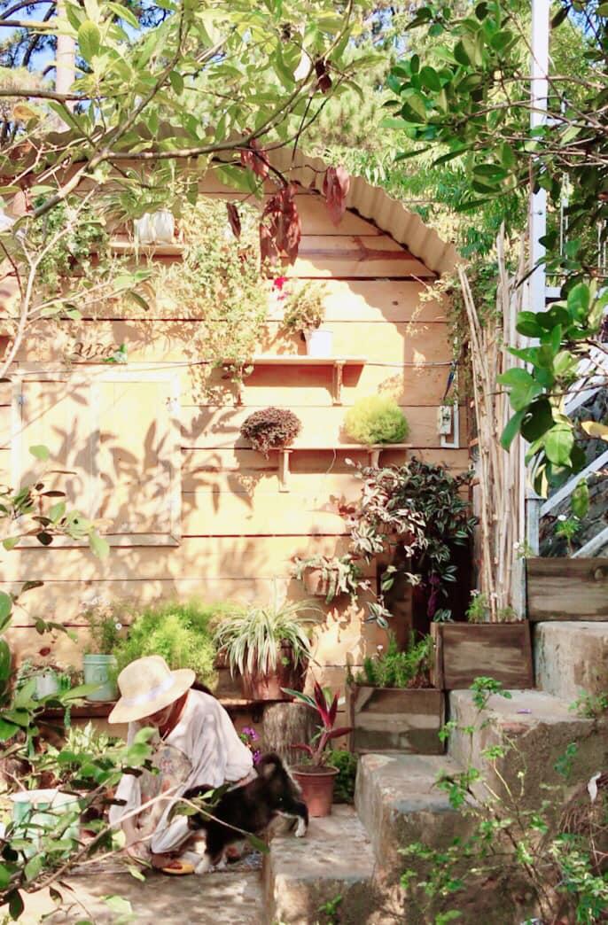 Ngôi nhà nhỏ của đôi bạn trẻ luôn rộng cửa đón du khách tới trải nghiệm cuộc sống yên bình (Ảnh nhân vật cung cấp)