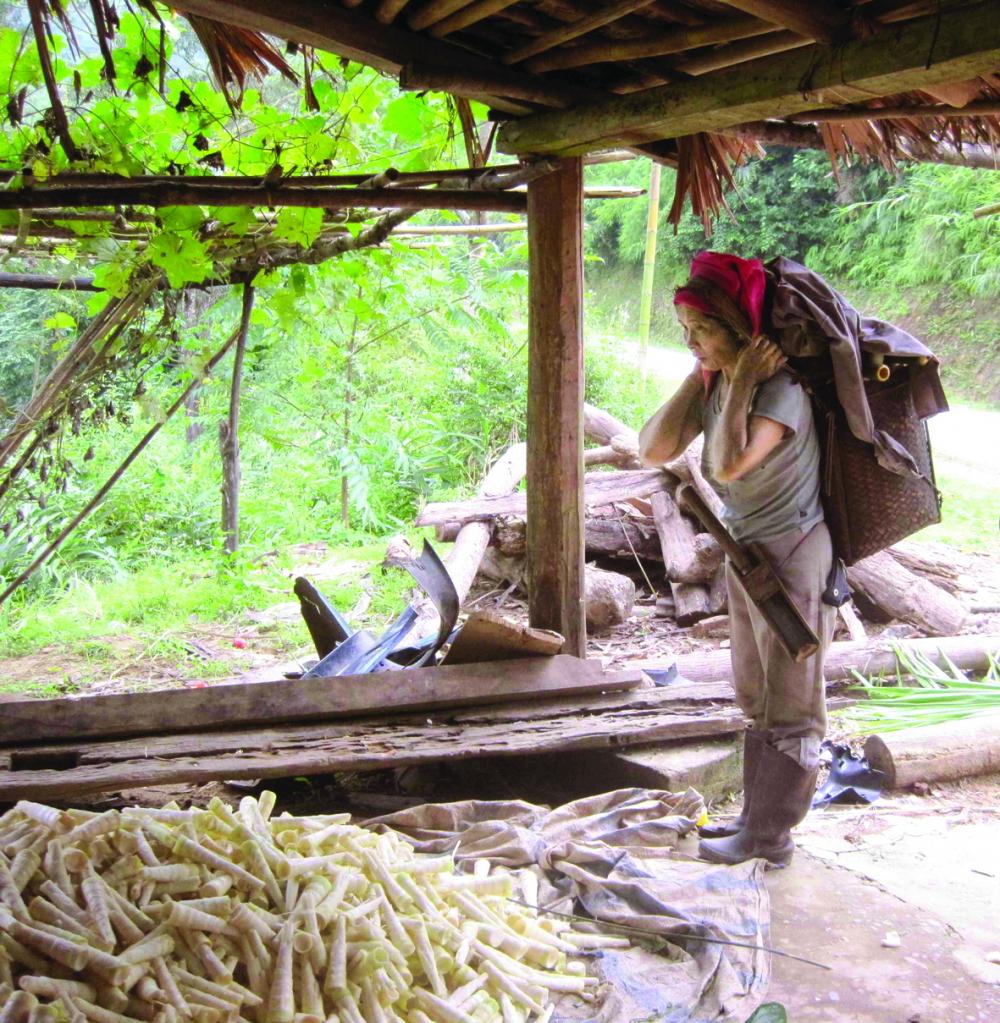 Bà Dắng đeo gùi đi rừng quanh năm, hái măng, hái chít, chặt nứa để trang trải mọi khoản chi tiêu trong nhà