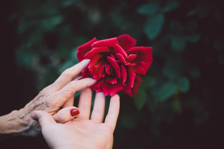 Cuộc đời này nếu giả sử không có ai yêu mẹ thì con vẫn sẽ luôn ở đây và yêu thương mẹ. Ảnh minh họa.