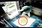 2 nữ khách che camera tiểu bậy trong thang máy chung cư