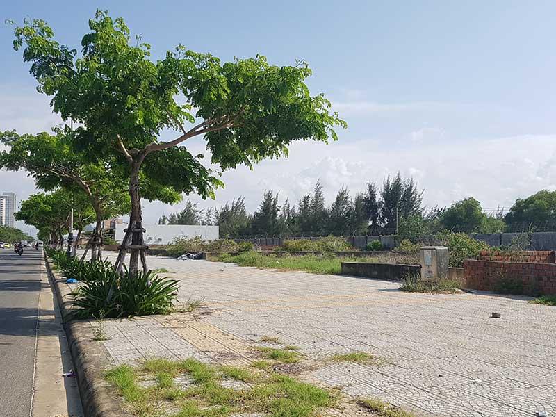 Người Trung Quốc thâu tóm đất ven biển Đà Nẵng? - ảnh 1