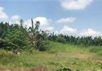 Được chuyển mục đích sử dụng đất trong khu quy hoạch treo