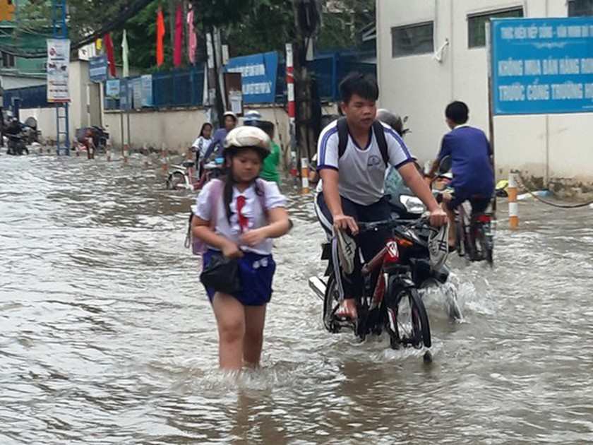 Natural disasters bring about US$13.55 million damage in Southern Vietnam ảnh 3