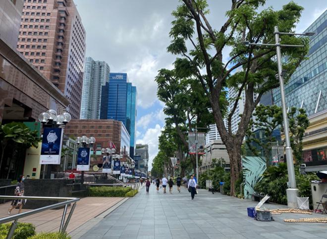 257 công dân Việt bị kẹt ở Singapore vì Covid-19: Đồng bào đùm bọc ngày khốn khó - ảnh 2