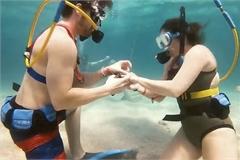 Màn cầu hôn siêu lãng mạn dưới đáy biển