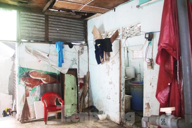 """Cận cảnh những khu tập thể """"ổ chuột"""", nguy cơ đổ sập ở trung tâm Đà Nẵng - ảnh 3"""