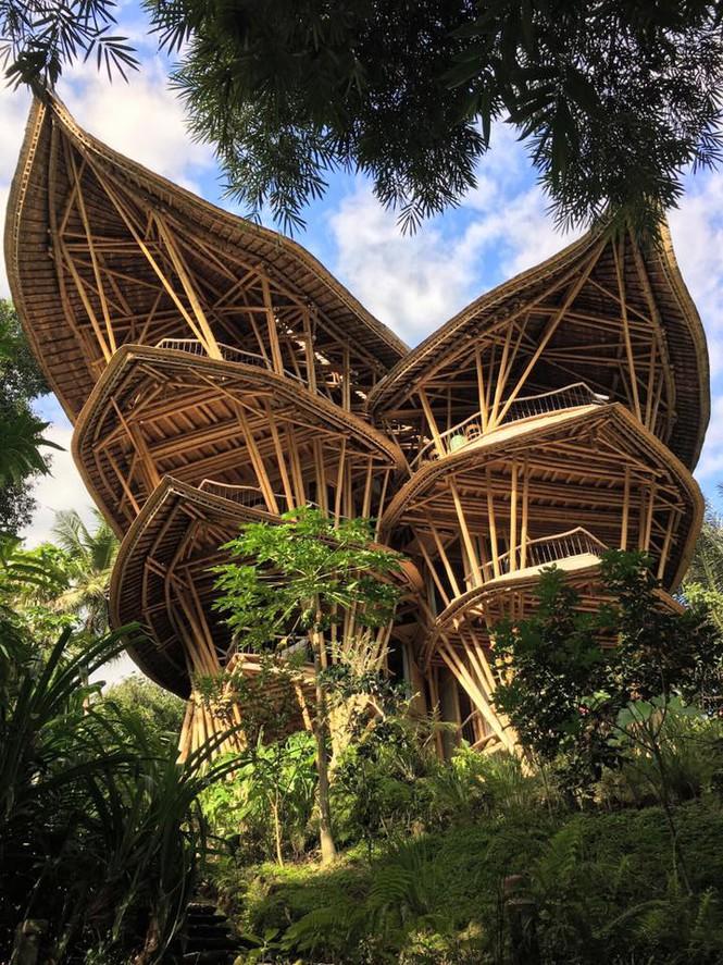 Ngỡ ngàng 'biệt thự tre' 6 tầng tuyệt đẹp giữa rừng - ảnh 1