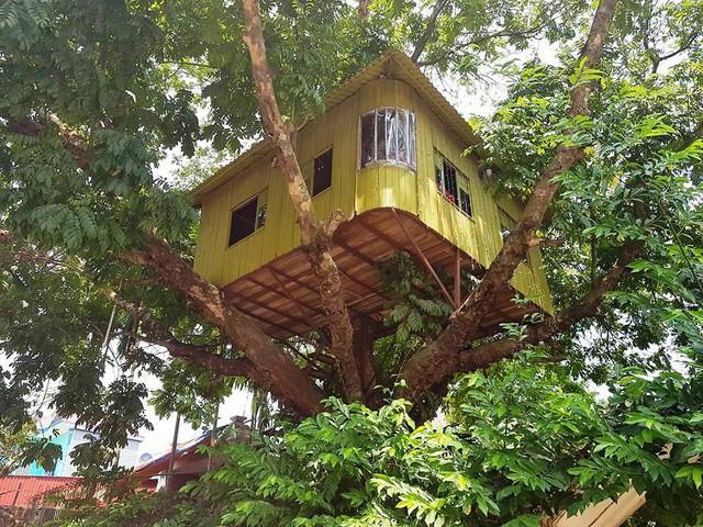 Cận cảnh những ngôi nhà 'treo mình' trên cây, 'độc' nhất Việt Nam - ảnh 8