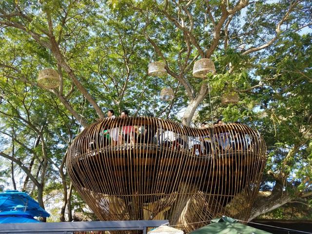 Cận cảnh những ngôi nhà 'treo mình' trên cây, 'độc' nhất Việt Nam - ảnh 10