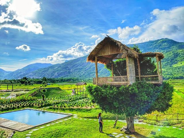 Cận cảnh những ngôi nhà 'treo mình' trên cây, 'độc' nhất Việt Nam - ảnh 1
