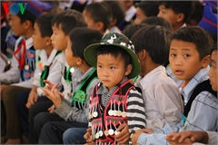 Vietnam to review localities' child protection services