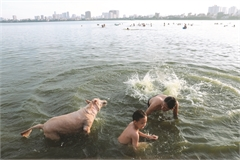 Taking a dip to cool off in the capital
