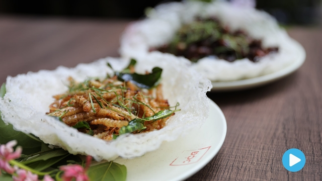 Vietnamese food: Fried insects