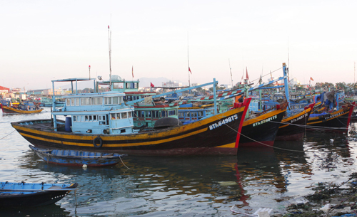 Fish catches recovering after Covid-19 in central provinces