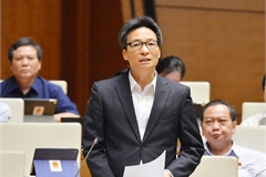 Deputy PM: Utilise COVID-19 success to raise VN's global profile