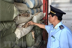 Containers of allegedly smuggled pharmaceutical material found at Da Nang's Tien Sa port