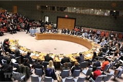 Vietnam enhances its role thanks to joining UNSC activities