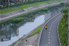 More solutions needed to revive rivers: Expert