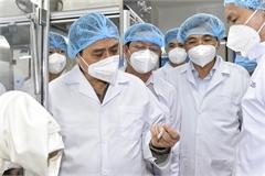 PM orders establishment of vaccine task force