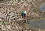 Drought and salt water in Vietnam will be under control by 2030