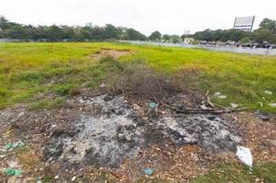 Cảnh bỏ hoang ở nhà máy 14 triệu USD của ông chủ Món Huế