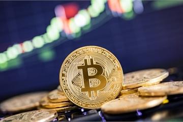 Giá bitcoin hôm nay 10/3: Bitcoin tiến sát ngưỡng 4.000 USD, tiền mã hóa tăng 30% - 100%