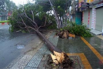 Thông tin liên lạc vẫn đảm bảo thông suốt trong cơn bão số 9