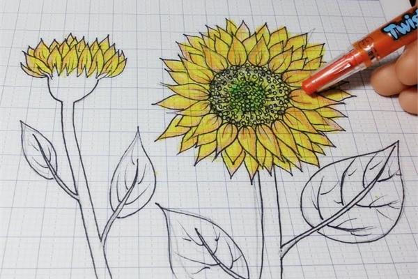 Hơn 300.000 bông hoa hướng dương, tương đương 5 tỷ đồng, trao tặng bệnh nhi ung thư