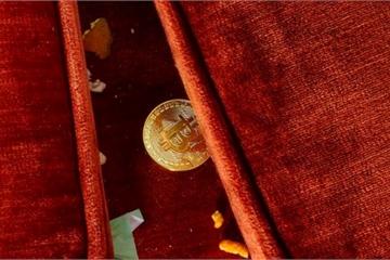 Giá Bitcoin hôm nay 29/1: Bitcoin tiếp tục đi xuống, vốn hóa 'bay' gần 6 tỷ USD