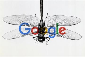 Không chịu nổi áp lực, Google chấm dứt dự án tìm kiếm tại Trung Quốc?