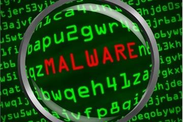 Nhiều người dùng máy tính Việt Nam chưa trang bị phần mềm diệt virus thường trực