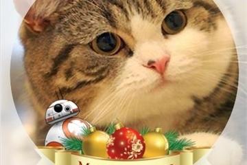 Hướng dẫn thay khung ảnh đại diện Facebook chủ đề Giáng sinh