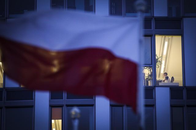 Bê bối gián điệp của Huawei ở Ba Lan: Kiến có thể giết chết voi - Ảnh 2.