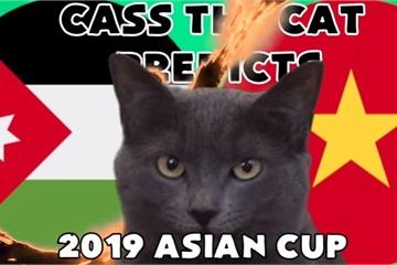 Trận Việt Nam vs Jordan: Bất ngờ với lựa chọn của mèo tiên tri Cass