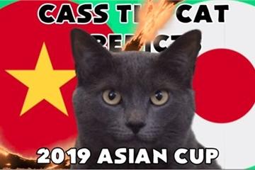 Dự đoán kết quả trận Việt Nam vs Nhật Bản: Mèo Cass dựa đoán đội tuyển Việt Nam chiến thắng