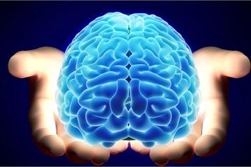 """Năm mới học điều mới với 8 ứng dụng cực kỳ """"bổ não"""""""