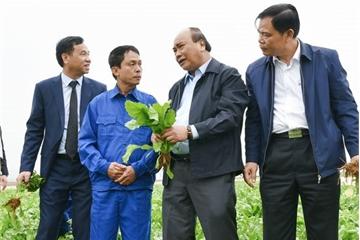 """Thủ tướng Nguyễn Xuân Phúc: """"Đồng Giao phải áp dụng công nghệ IoT để có nông nghiệp hiện đại"""""""