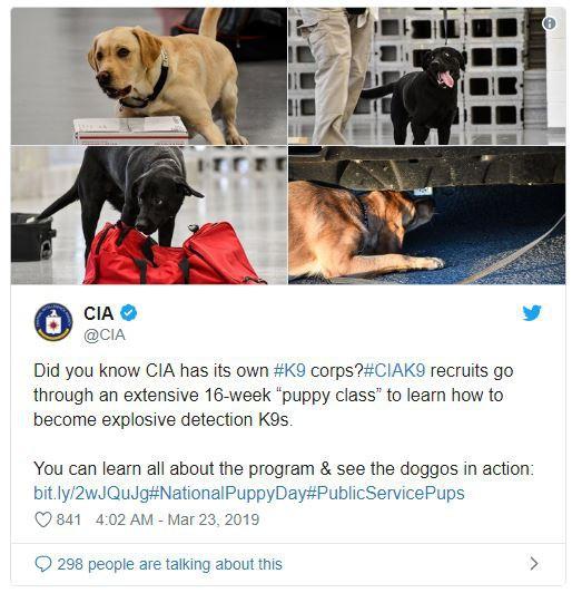 Cựu điệp viên Edward Snowden giải thích vì sao tự dưng CIA lại lập tài khoản Instagram - Ảnh 1.
