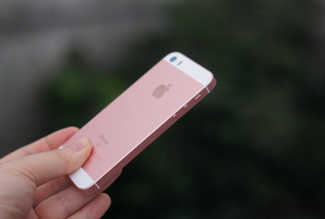 'Tuyet chung' tren the gioi, iPhone 5C va SE van song tot tai VN hinh anh 2