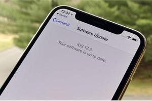 Đợi iOS 13, người dùng VN đã có thể tải bản 12.3