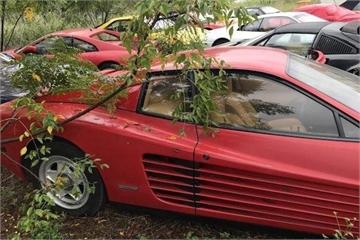 Hàng loạt siêu xe bị bỏ quên ở một khu vườn hoang